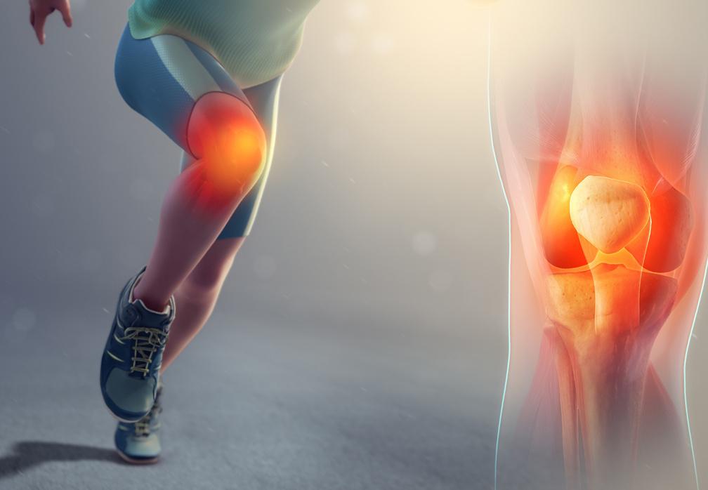 Types De Prothèses Orthopédiques